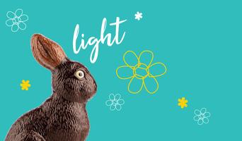 Pako'light Daniel Stoffel